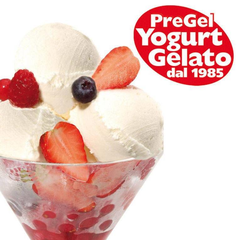 PG_Frozen Yogurt.jpg